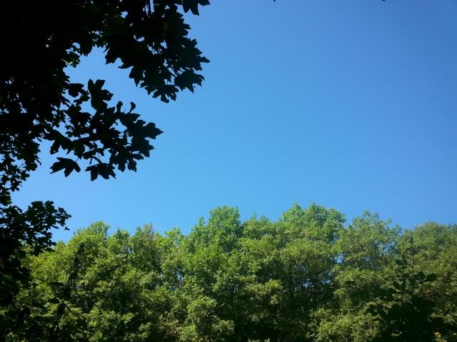 Un cielo d'estate