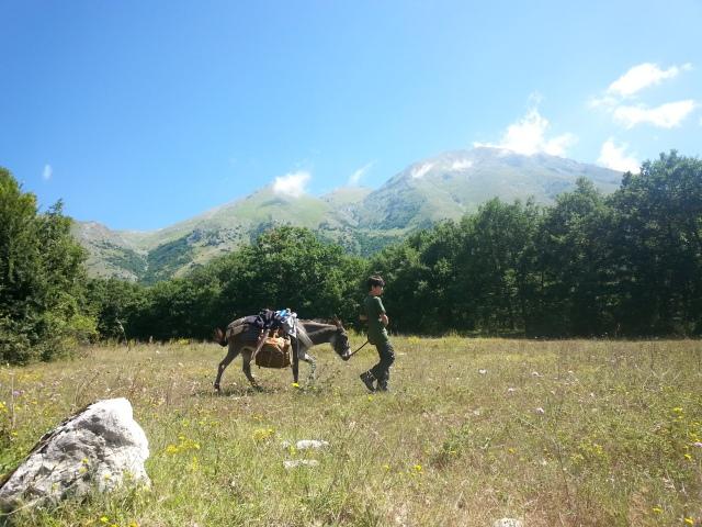 Si cammina sotto il Monte Velino...